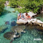 xcaret-cancun-familia-observa-tartarugas-gigantes-no-cenote