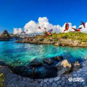 xcaret-cancun-praia-gaivotas