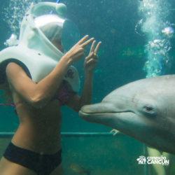 xel-ha-coba-parque-cancun-menina-brinca-com-golfinho-no-sea-trek