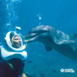 xel-ha-parque-cancun-golfinho-sea-trek