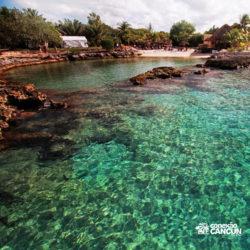 clube-de-praia-discovery-chankanaab-cozumel-cancun-visao-do-cenote