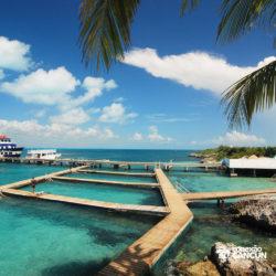 clube-de-praia-isla-discovery-dolphin-discovery-isla-mujeres-cancun-visao-dolphinario
