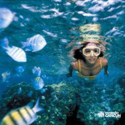 clube-de-praia-park-garrafon-dolphin-discovery-isla-mujeres-cancun-mulher-mergulhando-snorkel