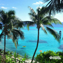 clube-de-praia-park-garrafon-dolphin-discovery-isla-mujeres-cancun-vista-do-mar
