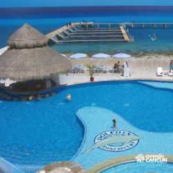 dive-with-dolphin-discovery-cancun-cozumel-isla-mujeres-visao-area