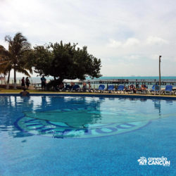 dolphin-royal-swim-vip-plus-isla-mujeres-cancun-piscina