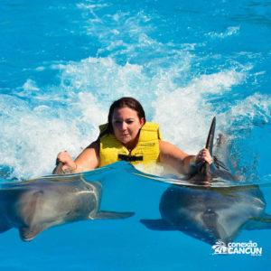 Nado no dolphinaris no programa DOLPHIN SWIM PROGRAM