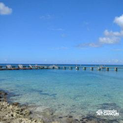 encontro-com-peixe-boi-dolphin-discovery-cozumel-cancun-isla-mujeres-dolphinario