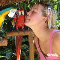 encontro-com-peixe-boi-dolphin-discovery-cozumel-cancun-isla-mujeres-mulher-beija-arara