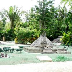 encontro-com-peixe-boi-dolphin-discovery-cozumel-cancun-isla-mujeres-piramide-maya