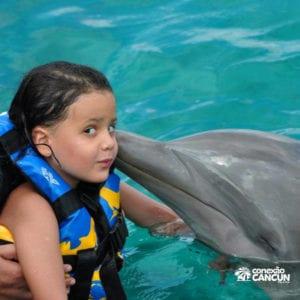 beijo do golfinho em isla mijueres