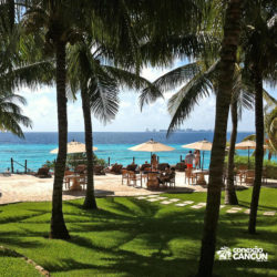 parque-garrafon-dolphin-discovery-royal-swim-vip-plus-isla-mujeres-cancun-bar-e-jardim