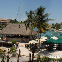 sea-life-circle-dolphin-discovery-riviera-maya-puerto-aventuras-cancun-bar-da-praia