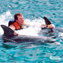 sea-life-circle-dolphin-discovery-riviera-maya-puerto-aventuras-cancun-homem-dorsal-tow-golfinho