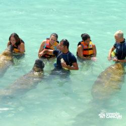 sea-life-circle-dolphin-discovery-riviera-maya-puerto-aventuras-cancun-jovens-alimentam-peixe-boi