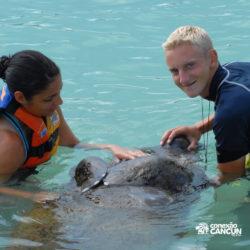sea-life-circle-dolphin-discovery-riviera-maya-puerto-aventuras-cancun-jovens-fazem-carinho-no-peixe-boi