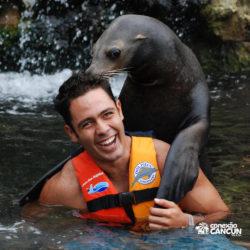 sea-life-circle-dolphin-discovery-riviera-maya-puerto-aventuras-cancun-peixe-boi-abraca-homem
