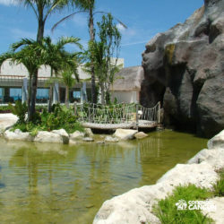 sea-lion-discovery-cozumel-cancun-lago-parque