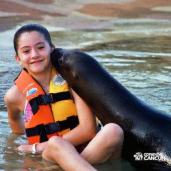 sea-lion-discovery-cozumel-cancun-leao-marinho-beija-menina
