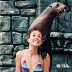 sea-lion-discovery-cozumel-cancun-leao-marinho-no-ombro-de-mulher