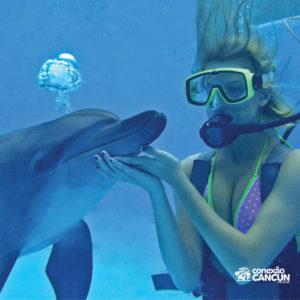 Mulher realizando o mergulho com golfinhos