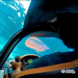 aventura-jetpack-adventures-cancun-seabreacher01