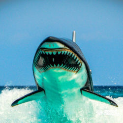 aventura-jetpack-adventures-cancun-seabreacher06