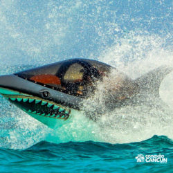 aventura-jetpack-adventures-cancun-seabreacher07