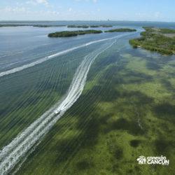 aventura-jungle-tour-aquatours-cancun-visao-da-lagoa