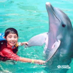 dolphin-discovery-catamara-swim-adventure-isla-mujeres-cancun-aperto-mao-com-golfinho