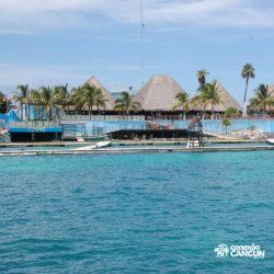 dolphin-discovery-catamara-swim-adventure-isla-mujeres-cancun-praia-dolphinario