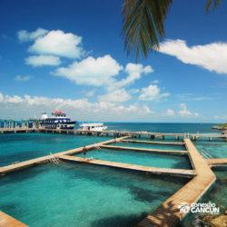 dolphin-discovery-catamara-swim-adventure-isla-mujeres-cancun-visao-dolphinario-praia