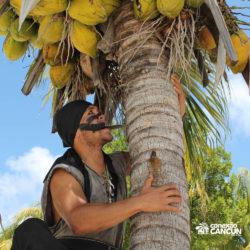 espetaculos-jolly-roger-barco-pirata-isla-mujeres-cancun-pirata-pegando-coco